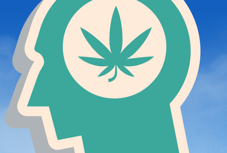 cbn cannabinol and the entourage affect