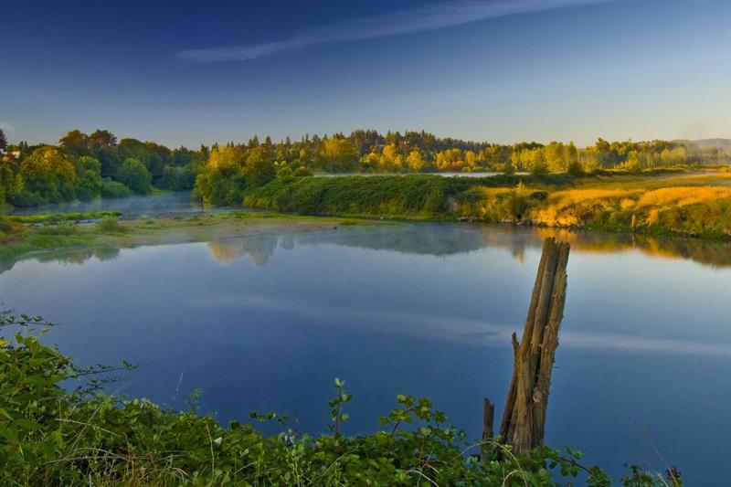sunrise-minto-brown-island-park-slough_web_1600x1067_color