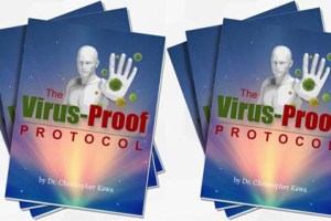 Virus Proof Protocol Review