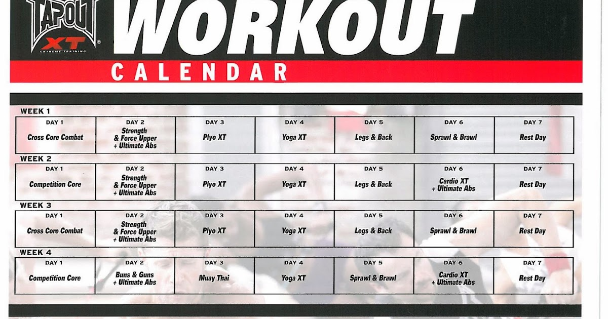 Tapout Xt Fitness Guide Pdf