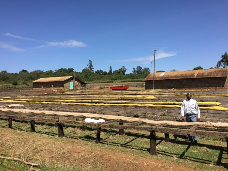 Drying beds and storehouses