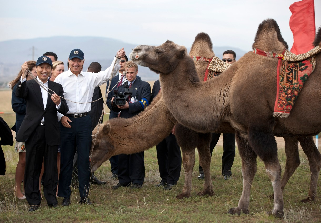 """Biden gets a Mongolian horse, names it """"Celtic"""" - CBS News"""