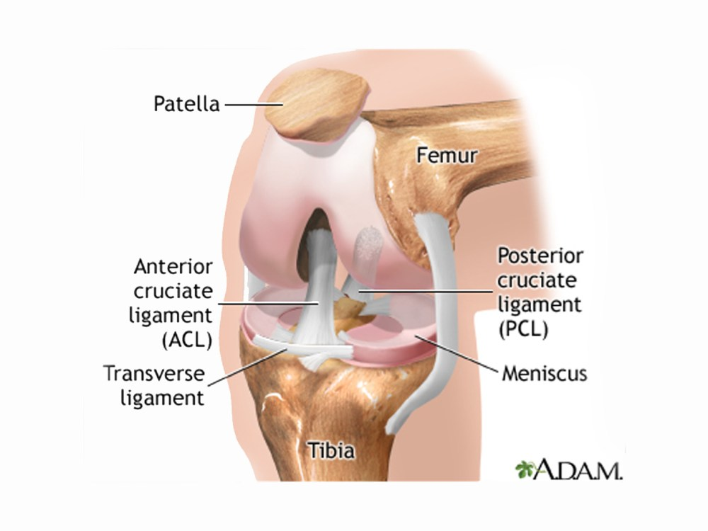 medium resolution of torn meniscus treatments physical therapy just as good as surgery says study