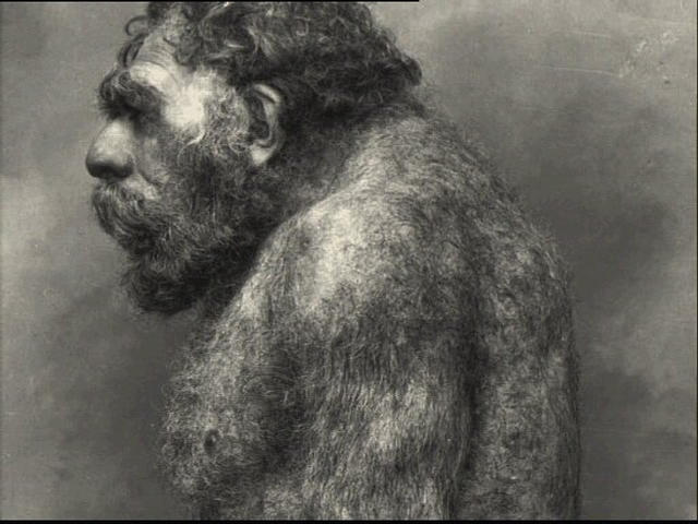 Ysis Of Ancient Poop Shows Neanderthals Ate Plants