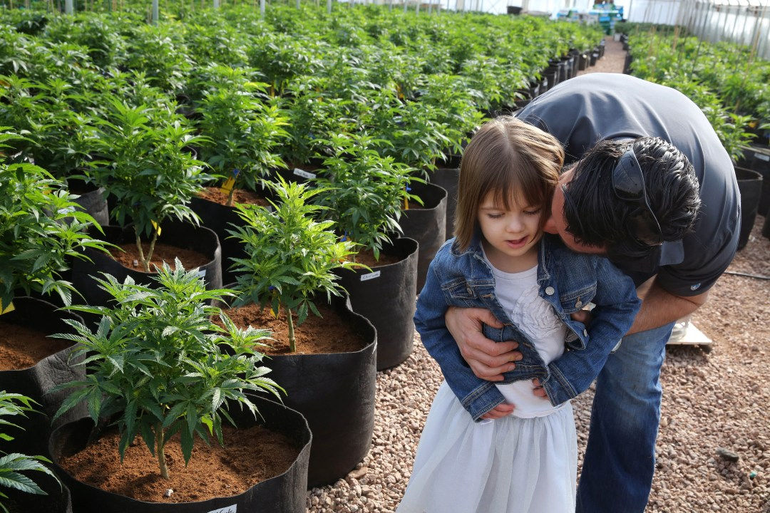 , Medical Marijuana and Epilepsy in Children (TED TALK)