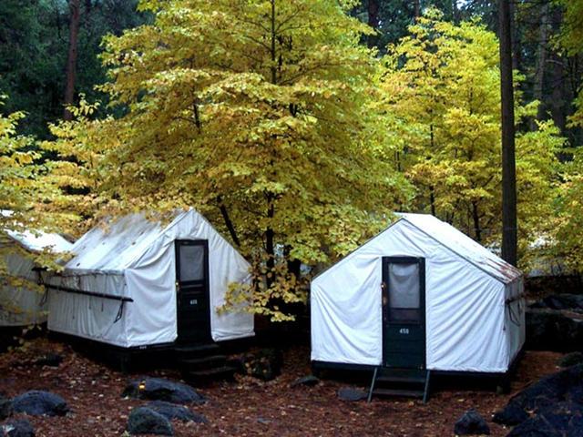 Report: Yosemite workers tested for Hantavirus - CBS News