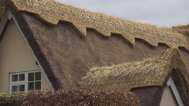thatched-roof-design-620.jpg