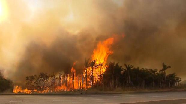 glor-california-fires-2017-12-7.jpg