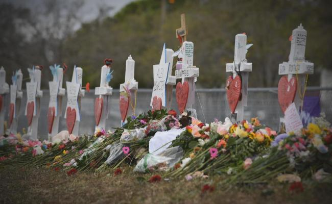 Parkland Shooting Inspired Red Flag Law Still Highly