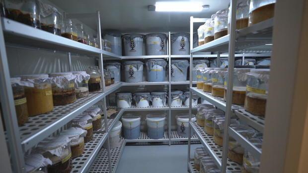 ctm-1017-noma-fermentation.jpg