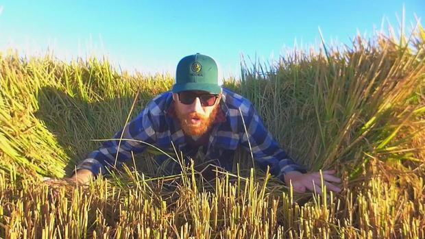 rice-farmer-1.jpg