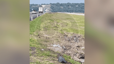 Hallan cadáver baleado tirado a un lado de la pista Morelia-Salamanca