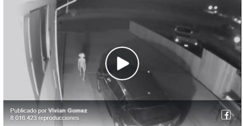 Video: Cámara de vigilancia graba extraña figura y la comparan con Dobby de Harry Potter