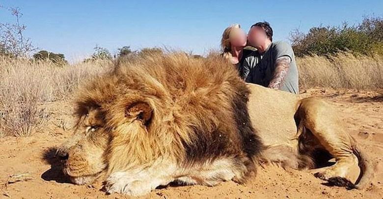 Pareja besándose junto a un león que mataron causa indignación