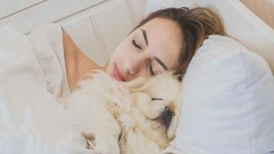 Estudio revela que las mujeres duermen mejor al lado de un perro que de un hombre