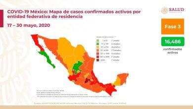 Photo of México: Suman 87,512 casos confirmados y 9,779 defunciones por covid-19