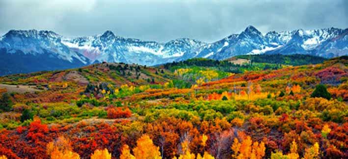 Fall Aspens Wallpaper Fall Colours Banff Canadian Baptists Of Western Canada