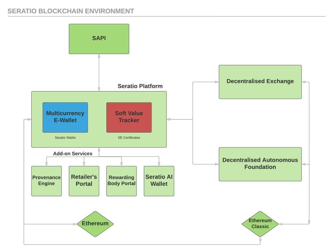 Blockchain Environment (1)