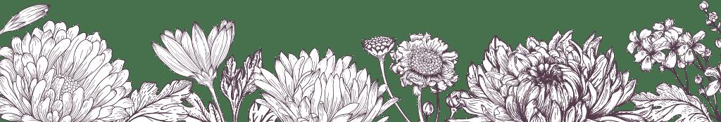 Fall Sunflower Wallpaper Flower Directory California Cut Flower Commission