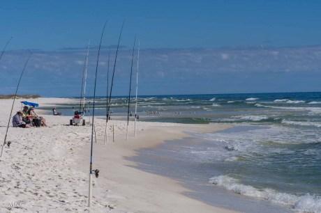 High Energy Fishing