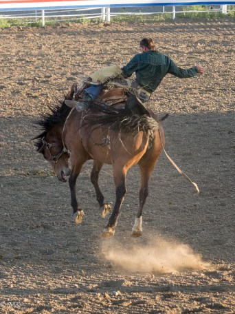 Rodeo, Cody, WY