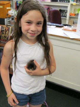 Alyssa and pet chick at Van Etten Library