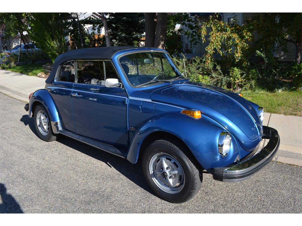 hight resolution of large picture of 78 beetle m3yv