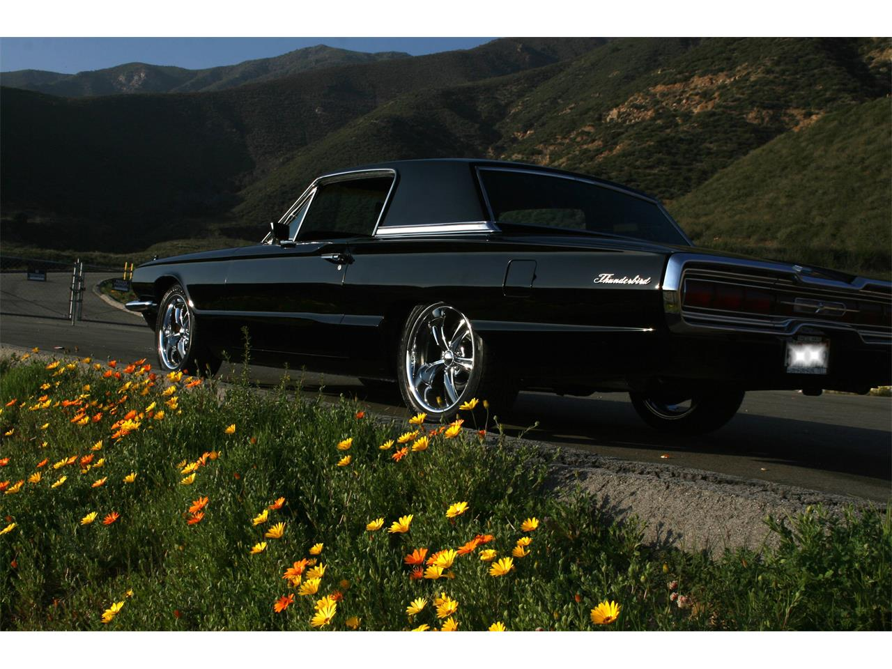 hight resolution of large picture of 66 thunderbird m8uf