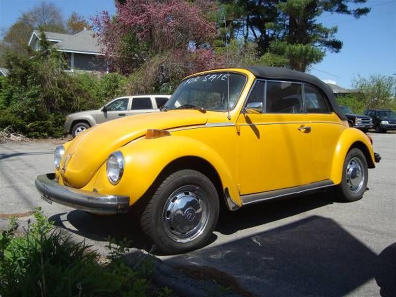 hight resolution of large picture of 78 beetle o4re