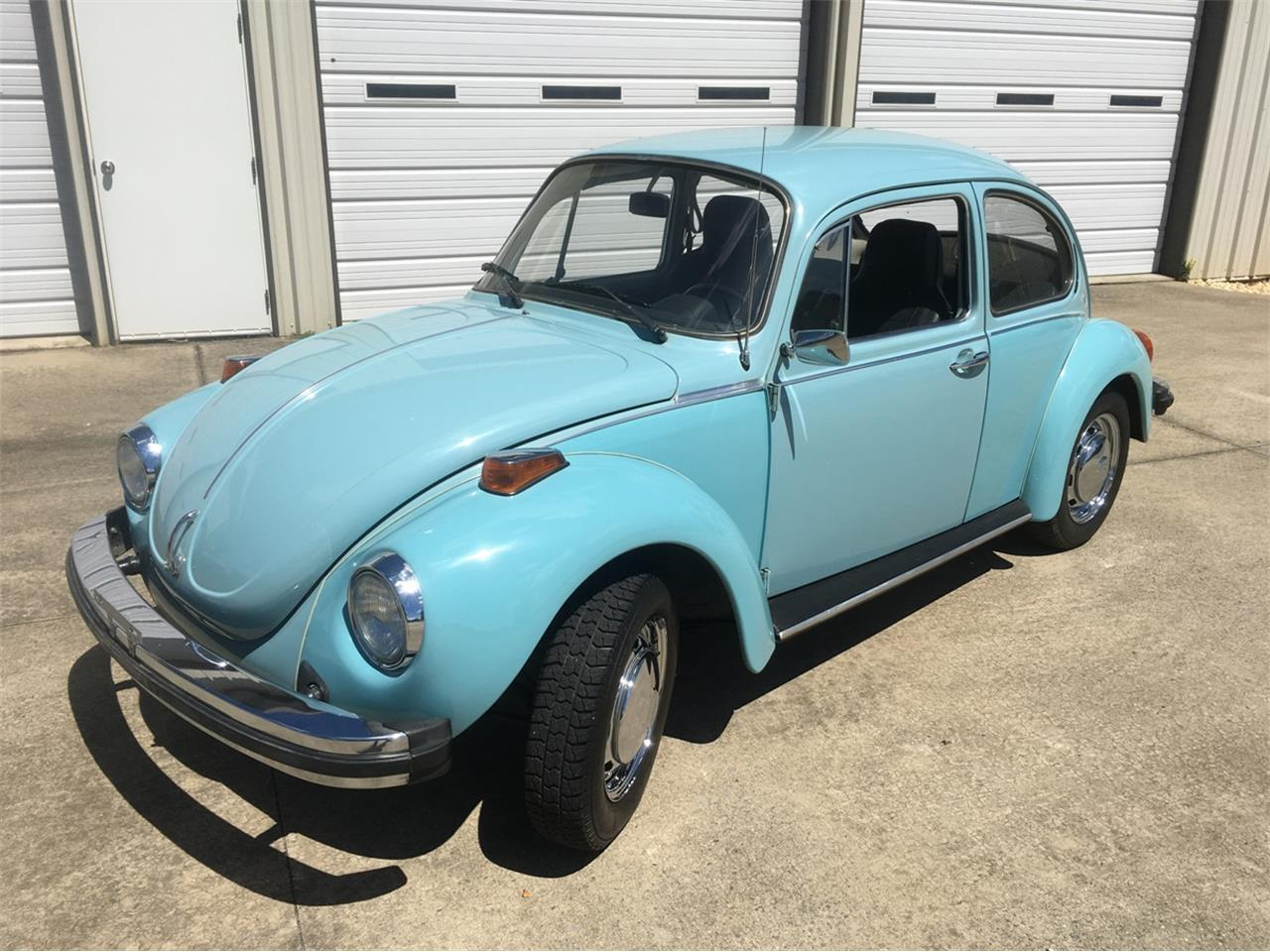 hight resolution of large picture of 74 super beetle ogei