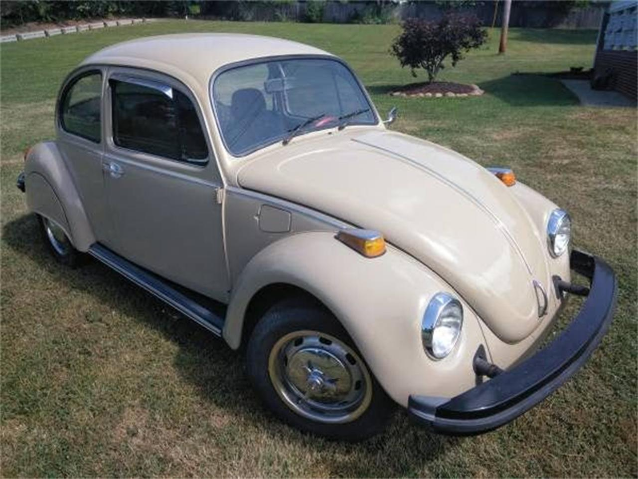 hight resolution of large picture of 74 beetle oosl