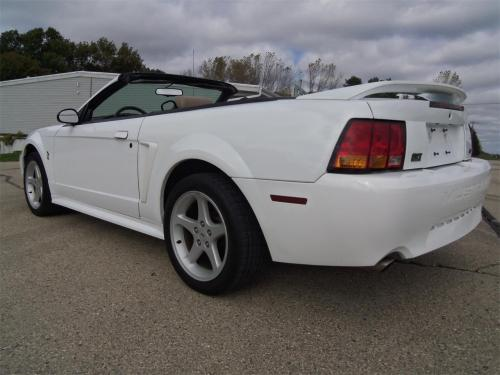 small resolution of large picture of 99 mustang svt cobra opef