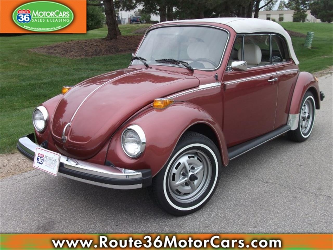 hight resolution of large picture of 78 beetle pb1v