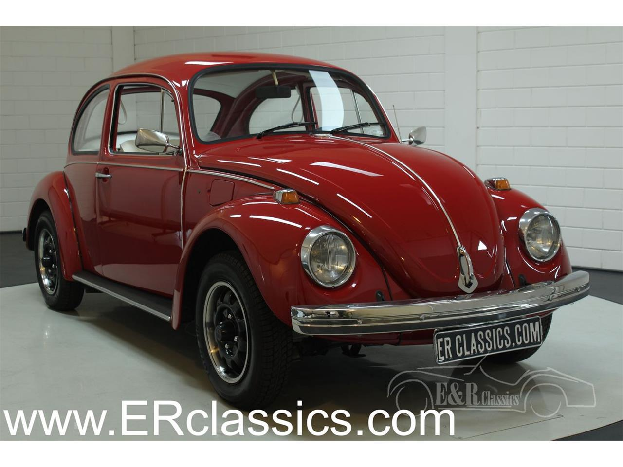 hight resolution of large picture of 74 beetle phuv