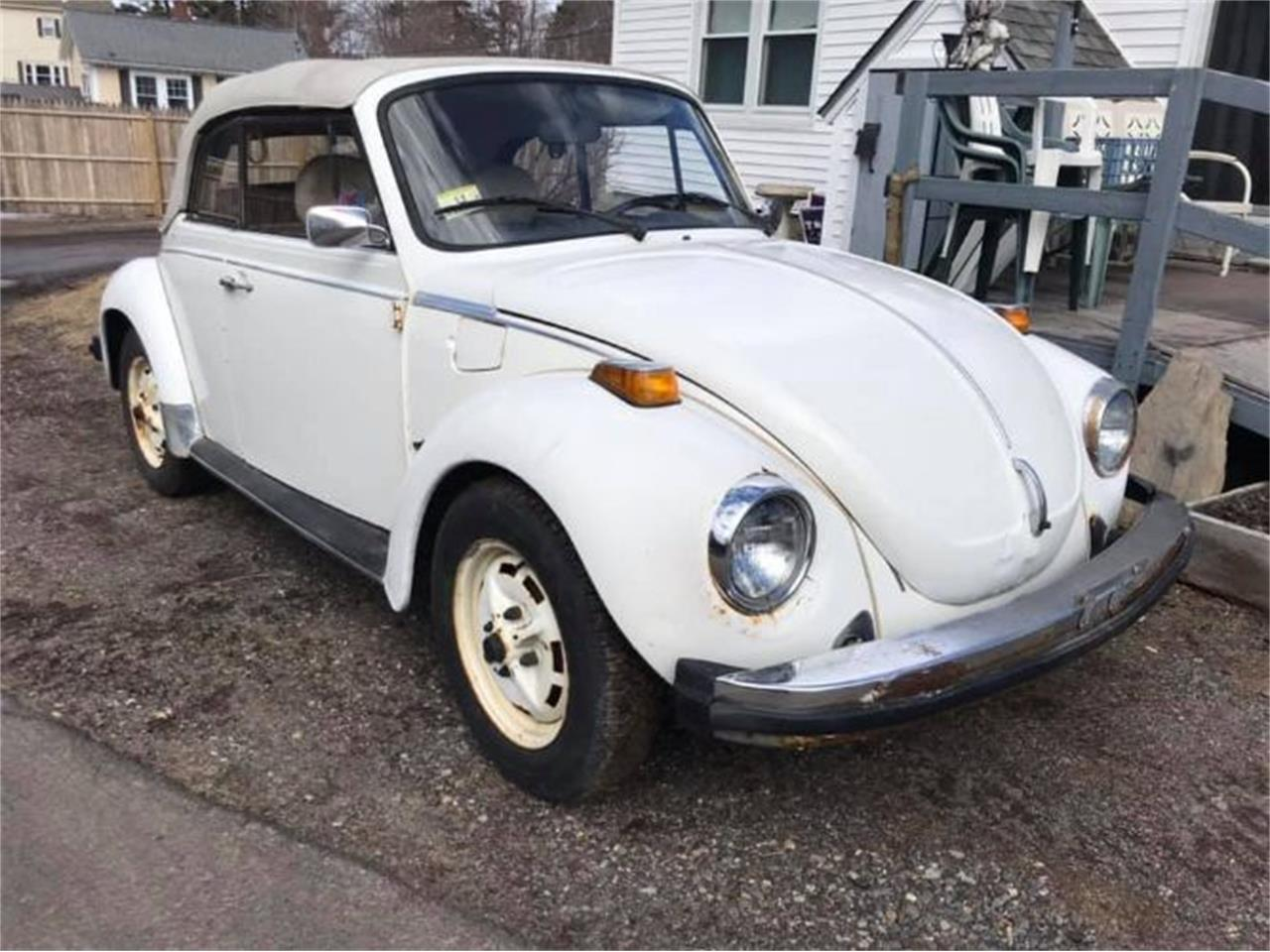 hight resolution of large picture of 78 beetle q2oo