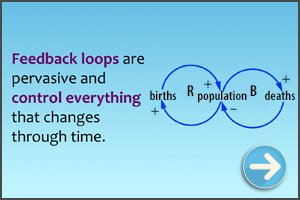 Feedback Loops diagram