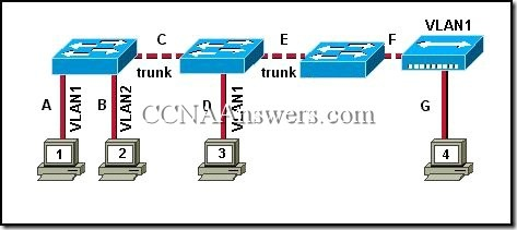 CCNA3Chapter37 thumb CCNA 3 Chapter 3 V4.0 Answers
