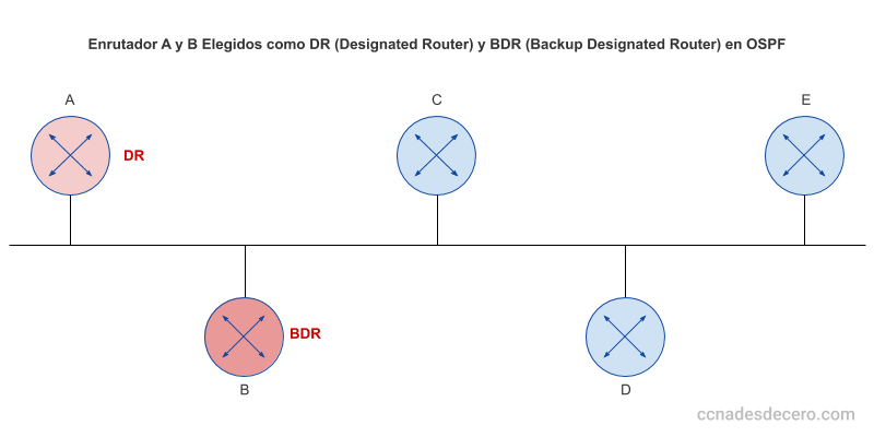 Designated Router (DR) y Backup Designated Router (BDR) en OSPF