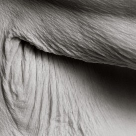 centenarians-1-650x650