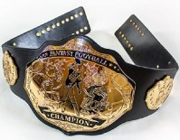 Fantasy Football Championship Ring, Trophy, Title Belt ...