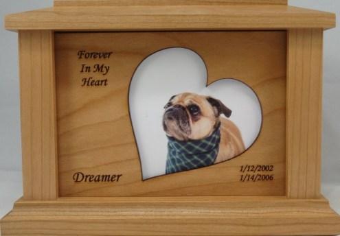 Forever Frame 1