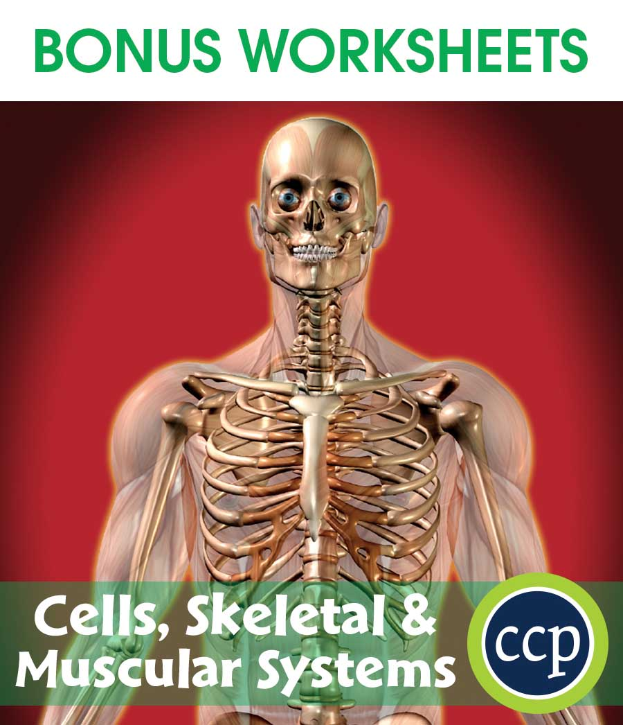 medium resolution of -skeletal-muscular-systems-bonus-worksheets-cc4516d