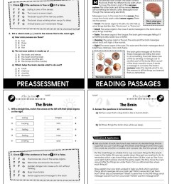 Hands-On - Life Science: The Brain Gr. 1-5 - Grades 1 to 5 - Lesson Plan -  Worksheets - CCP Interactive [ 1165 x 900 Pixel ]