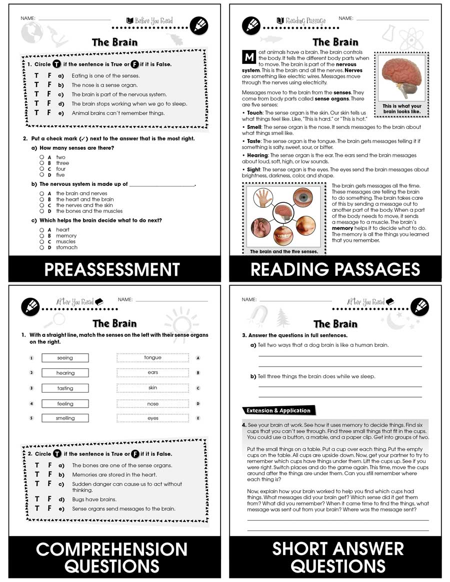 medium resolution of Hands-On - Life Science: The Brain Gr. 1-5 - Grades 1 to 5 - Lesson Plan -  Worksheets - CCP Interactive