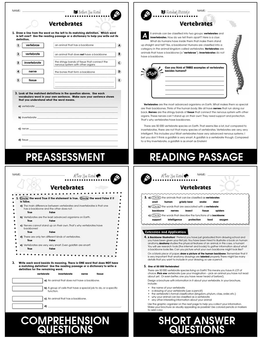 medium resolution of Classification \u0026 Adaptation: Vertebrates Gr. 5-8 - Grades 5 to 8 - Lesson  Plan - Worksheets - CCP Interactive