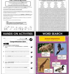 Classification \u0026 Adaptation: Invertebrates Gr. 5-8 - Grades 5 to 8 - Lesson  Plan - Worksheets - CCP Interactive [ 1165 x 900 Pixel ]
