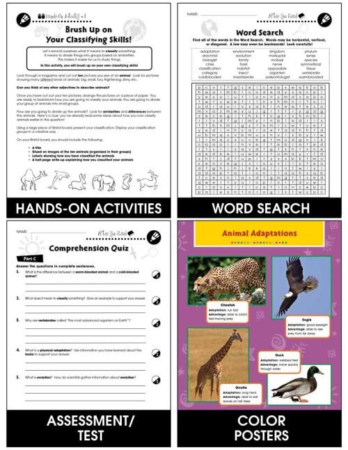 small resolution of Classification \u0026 Adaptation: Invertebrates Gr. 5-8 - Grades 5 to 8 - Lesson  Plan - Worksheets - CCP Interactive