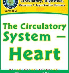 Circulatory [ 1164 x 899 Pixel ]