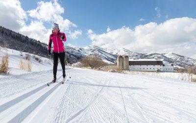 Ski Area Survey Report – February 2021
