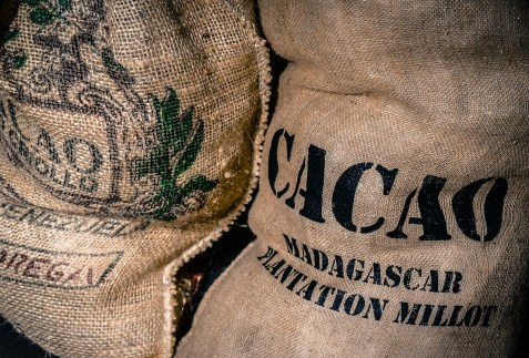 Bags of Cacao
